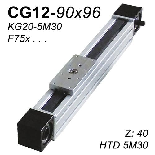 CG12-90x96 Lineer Modül